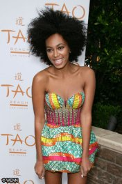 solange-knowles-boxing-kitten