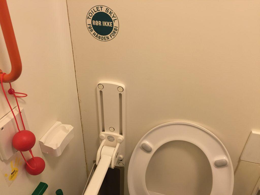 herlev-hospital-toilet