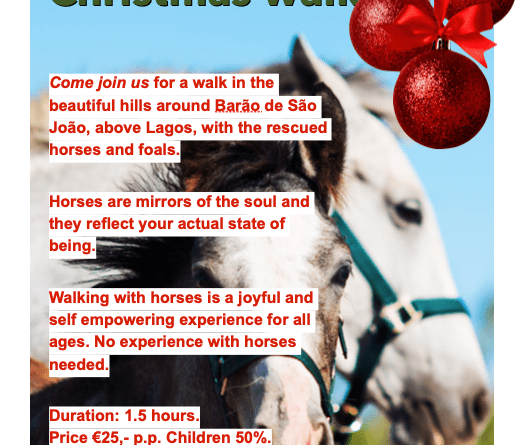 Christmas HorseWalk