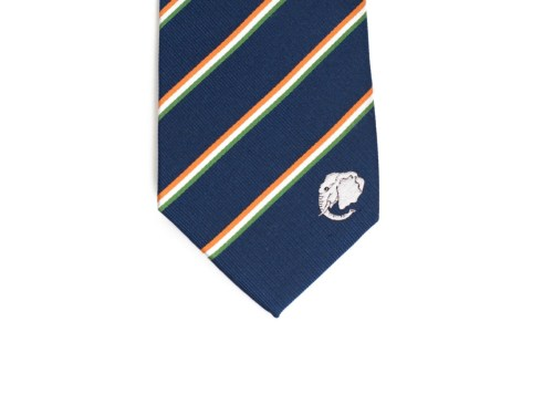 Ivory Coast Skinny Tie