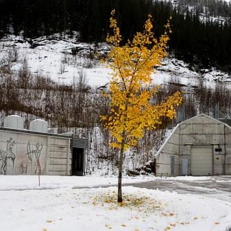 Nasjonalbiblioteket og Statfjord