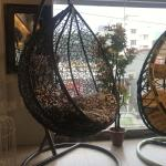 Egg Shaped Swing Chair Price In Bangladesh