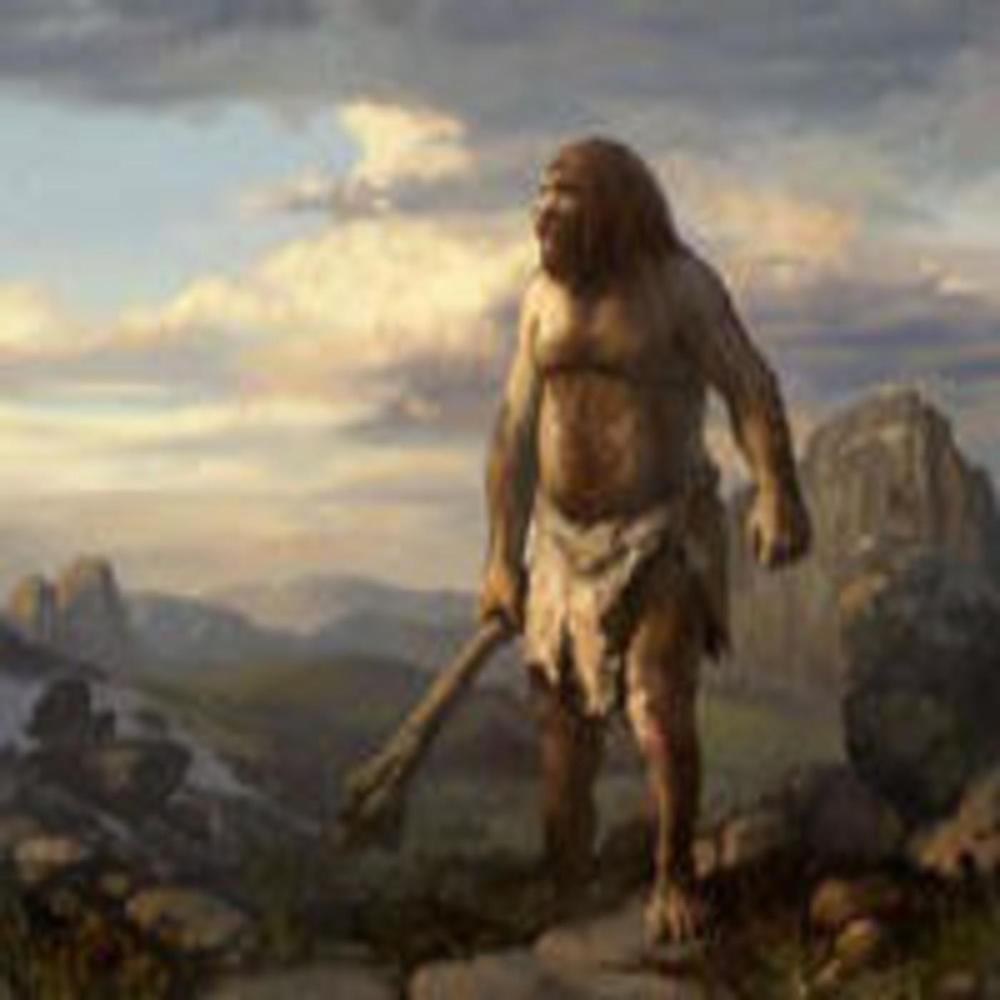 El hombre de Neandertal 'teoría' en Solo Documental en mp3(02/08 a las  10:19:17) 50:51 5806463 - iVoox