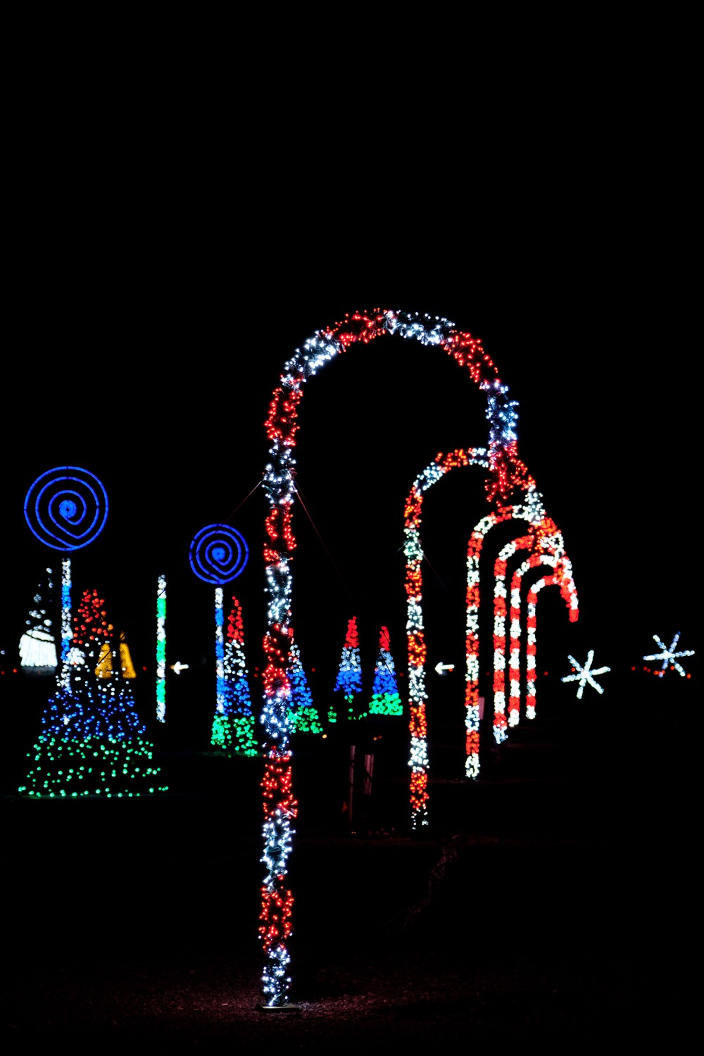 Coney Island Christmas Lights
