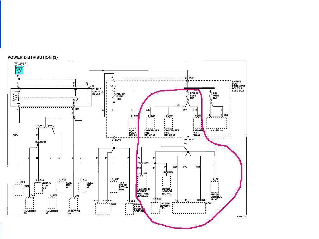 Mercedes Tailgate Wiring Diagram