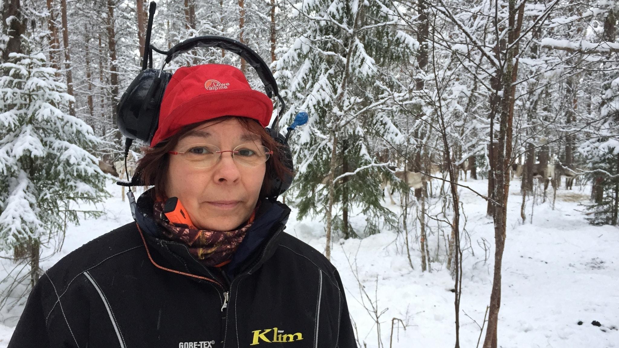 Marianne Persson, ordförande i Jinjevaeri sameby