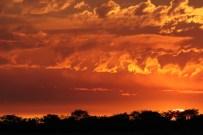 Sonnenuntergang in Okaukuejo