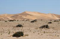 Die Dünen bei Swakopmund.