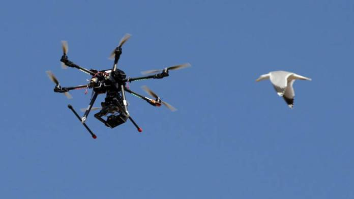 Insurers turn to drones to minimise risk of loss in crop schemes