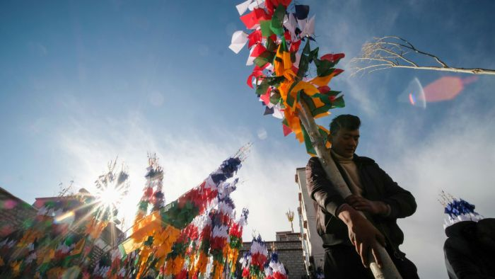 """A man carries a tree sewed with prayer flags as part of preparations for the """"Losar"""" or the Tibetan New Year celebration, in Lhasa, Tibet Autonomous Region, China. (Image: Reuters)"""