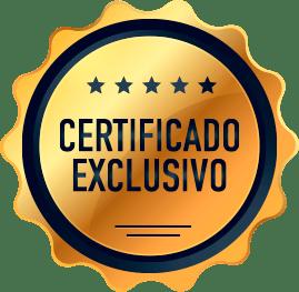Certificado Exclusivo Curso Online Satori (Samadhi)