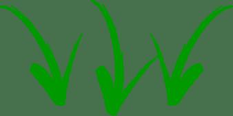 setas-verdes Emagrecer