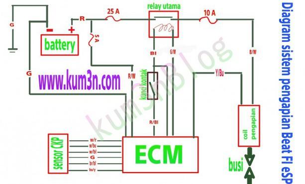 wiring diagram cat5 avs b wiring diagram ac  begeboy