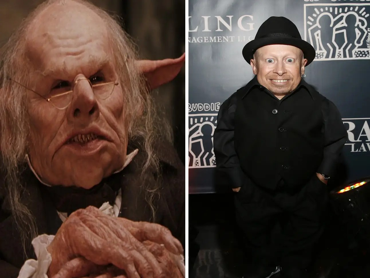 16 actors you probably didn't realize were in the 'Harry
