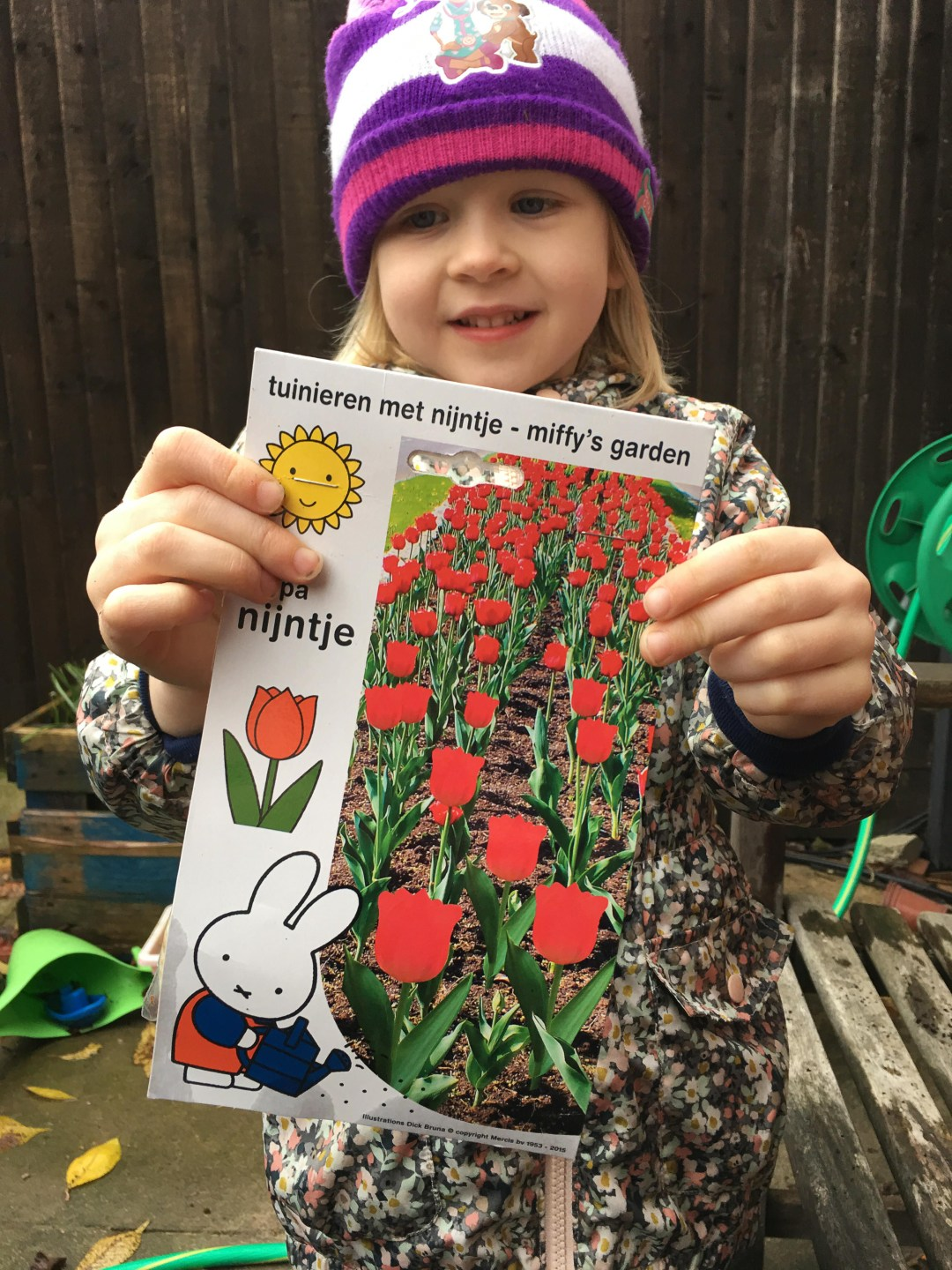 Planting Miffy tulips for Spring