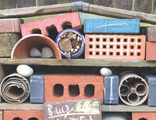 How to build a bug hotel - the gingerbread house blog