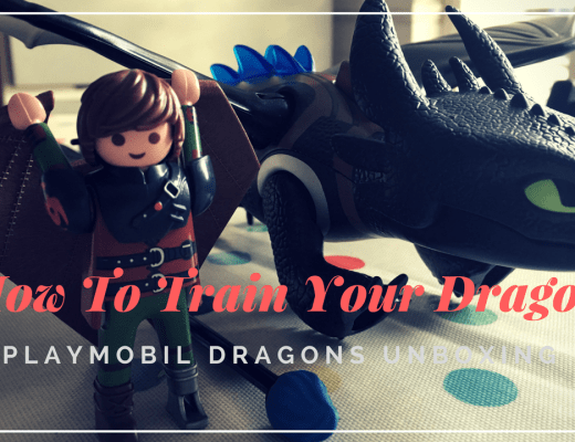 Playmobil How to Train Your Dragon sets
