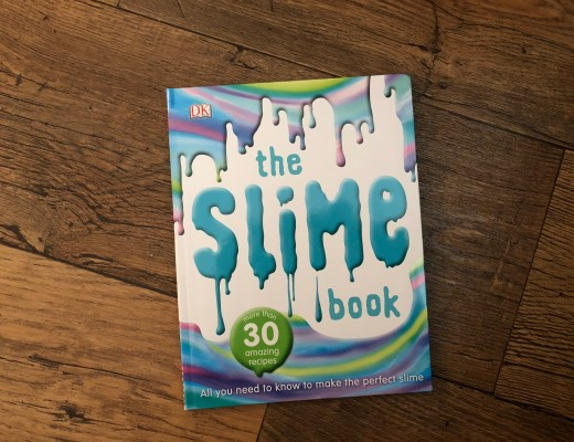The Slime Book cover