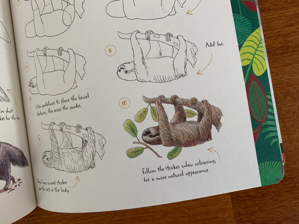 10 Step Drawing: Animals by Heather Kilgour
