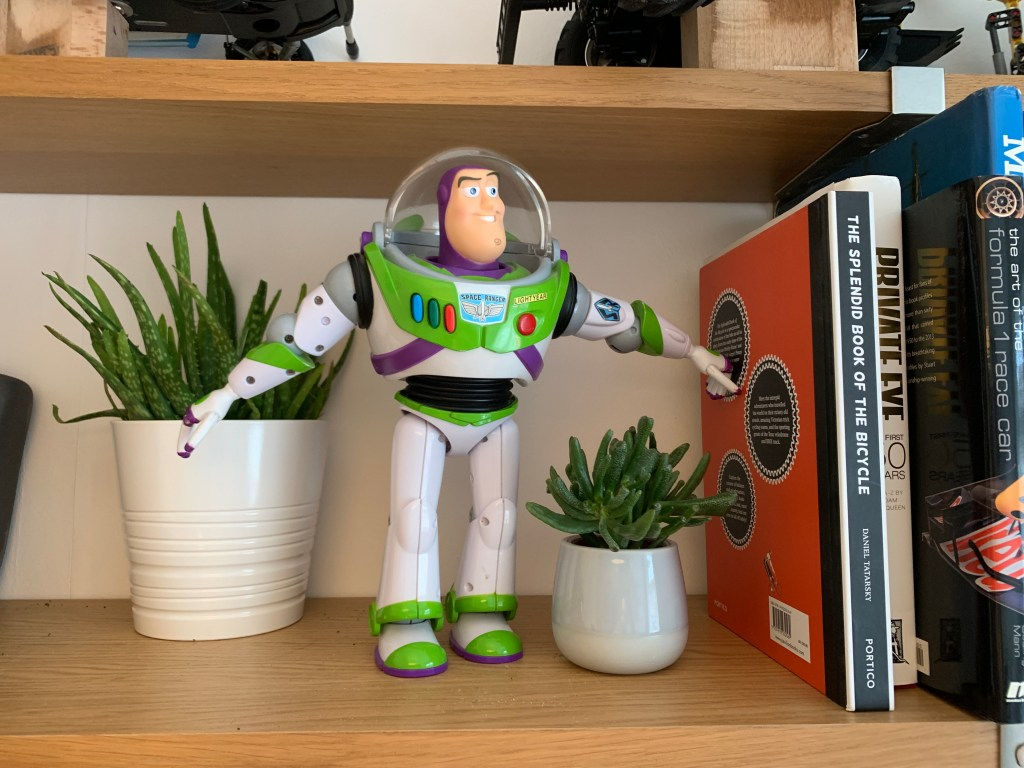 discovering Buzz on the bookshelves
