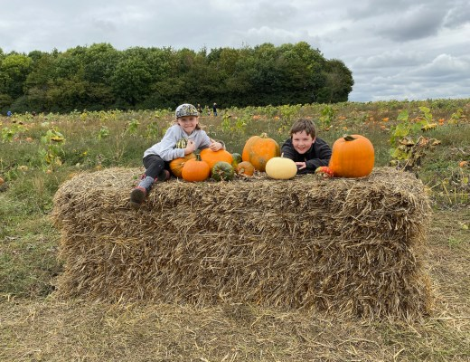 pumpkin patch near London