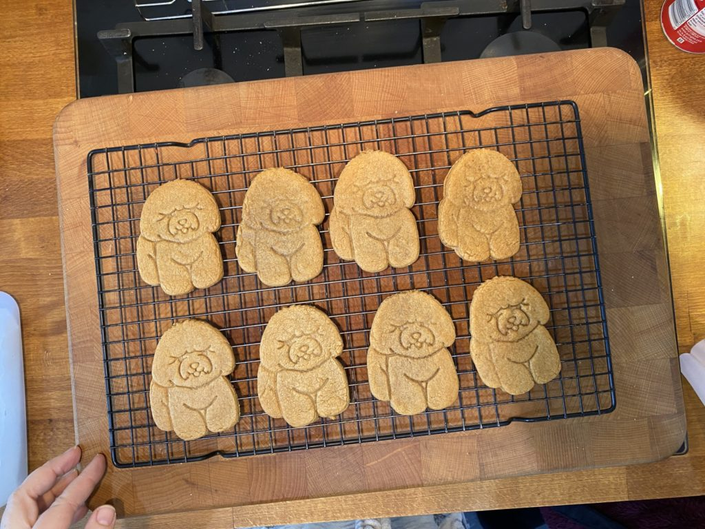 baking puppy gingerbread cookies