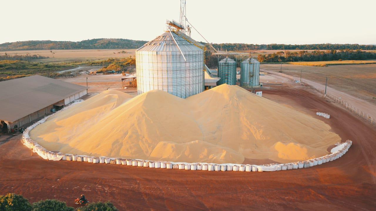 milho estocado ao relento em Mato Grosso