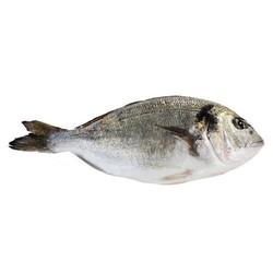 كيفية إصلاح رائحة أسماك البحر