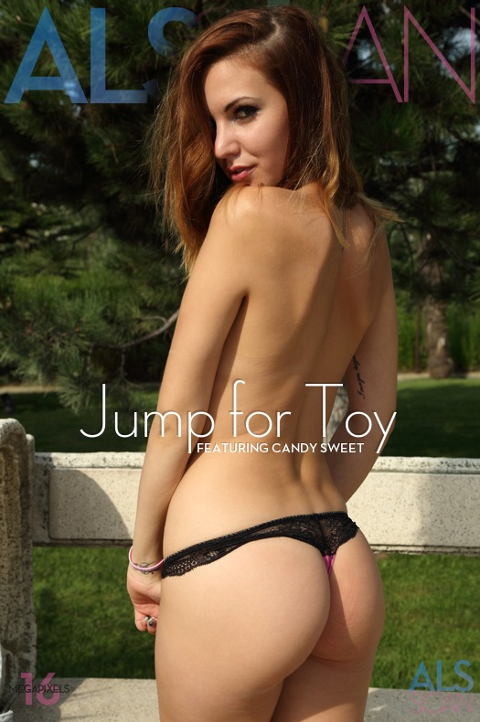 Jump for Toy