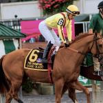 High Hopes For Jose Ortiz And Good Magic In Fountain Of Youth America S Best Racing