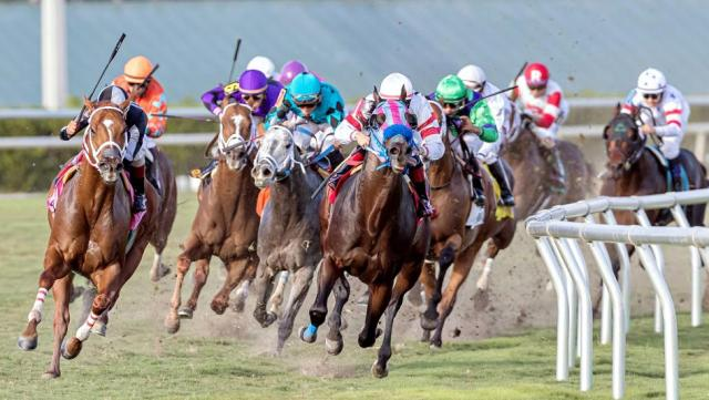 Daily Horse Racing Lineup: Racetracks to Watch and Bet Today ...