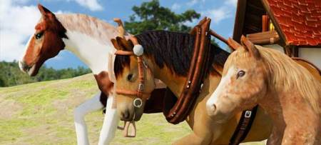 Horse      Android Games 365   Free Android Games Download Wild Horse Simulator  3D Run
