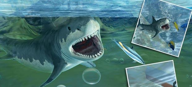 Hungry White Shark Revenge 3D