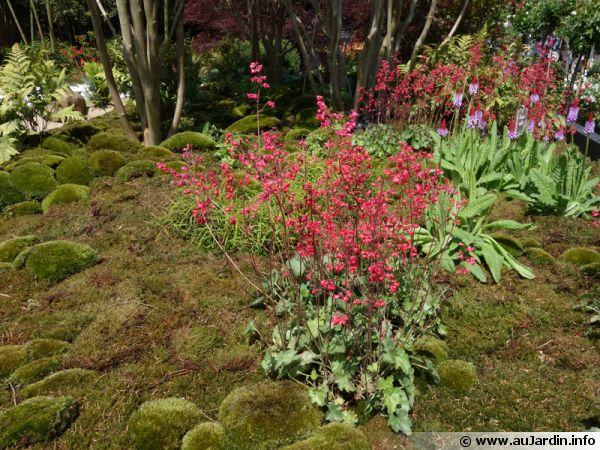 le jardin japonais de pascal laforge