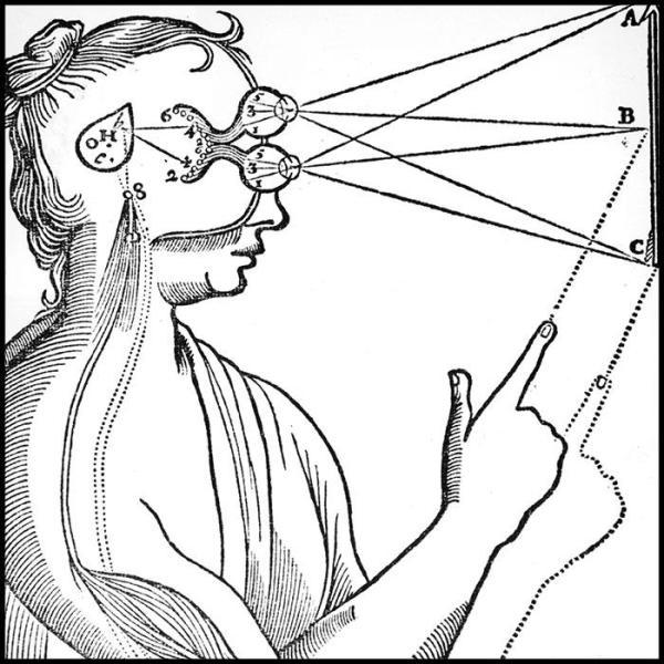 optical illusions eye tricks # 42