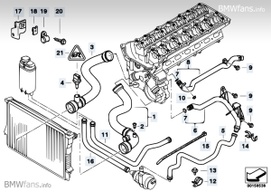 Cooling System Water Hoses BMW 5' E39, 528i (M52) — BMW parts catalog