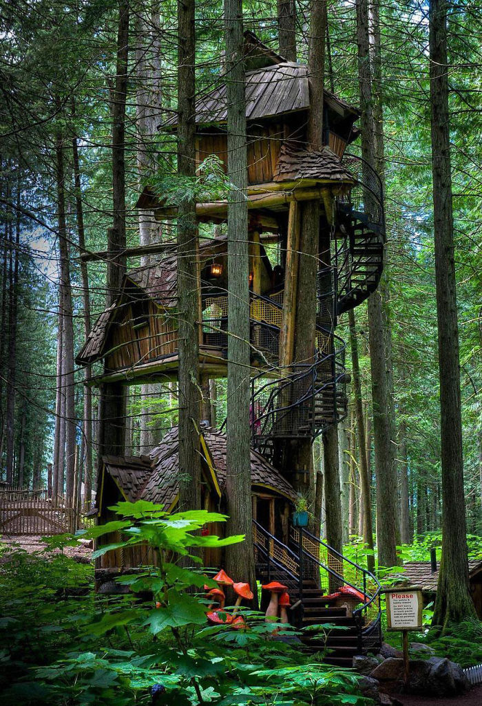 Post The Most Beautiful Treehouses From All Over The World Bored Panda