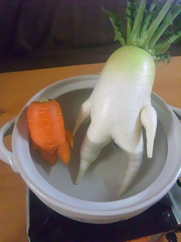 funny-shaped-vegetables-fruits-15