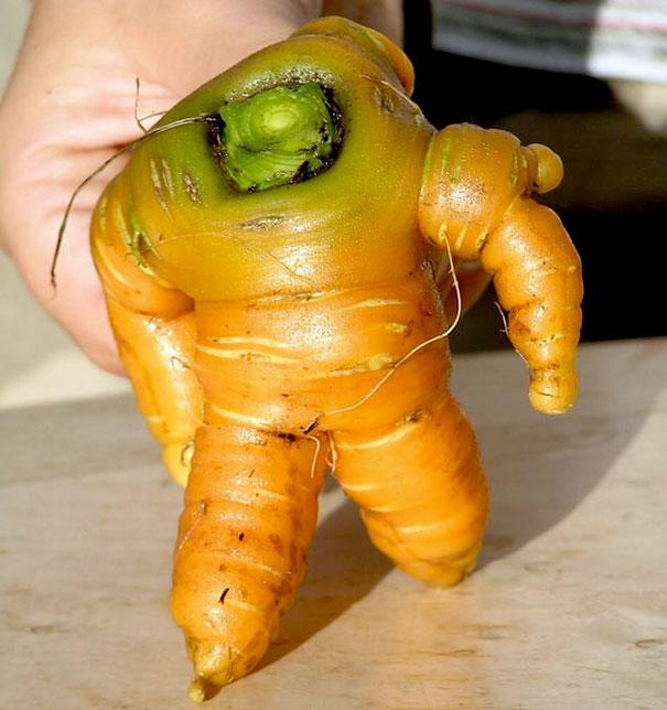 funny-shaped-vegetables-fruits-2