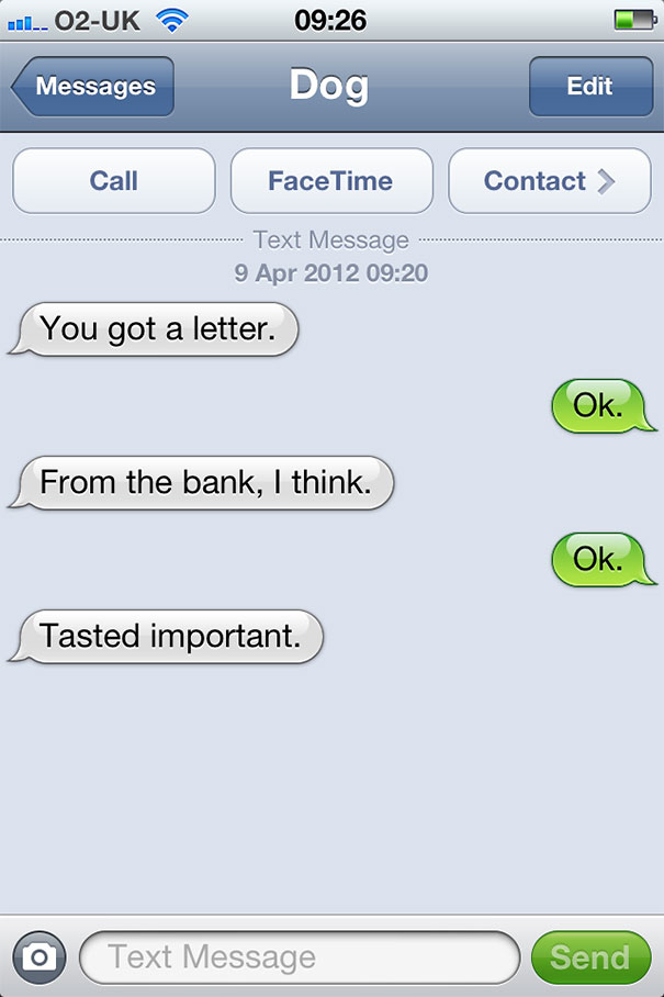 texts-from-dog-29