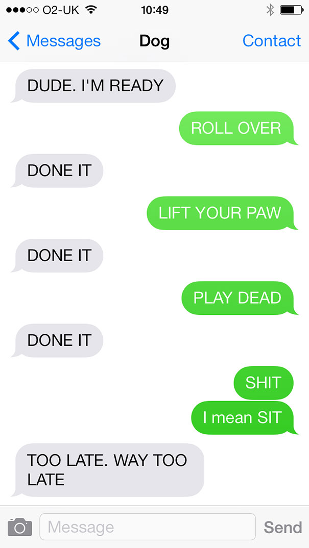texts-from-dog-3