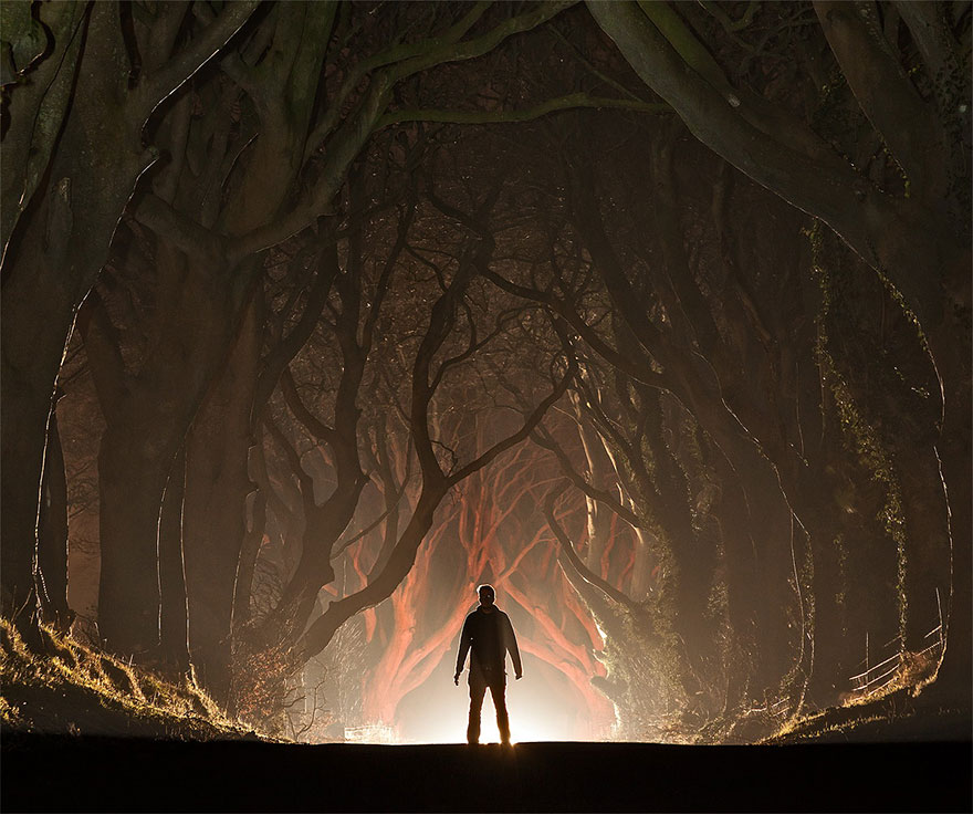 The Stunning Tree Tunnel You Saw On Game Of Thrones Is REAL And Can Be Found In Northern