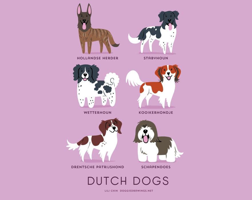 dogs-of-the-world-lili-chin-15