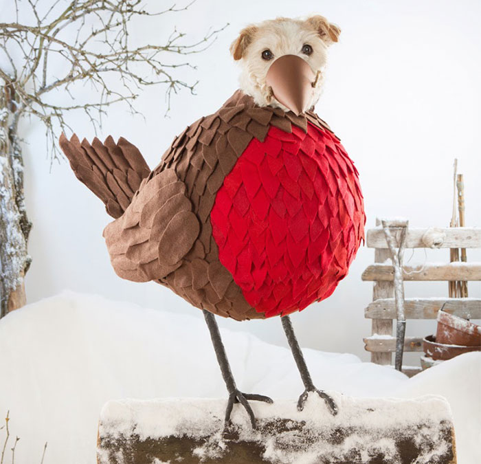 dog-transformed-to-other-animals-holiday-card-1