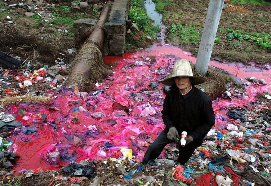 Woman Collects Plastic Bottles Near River Polluted By Reddish Dye