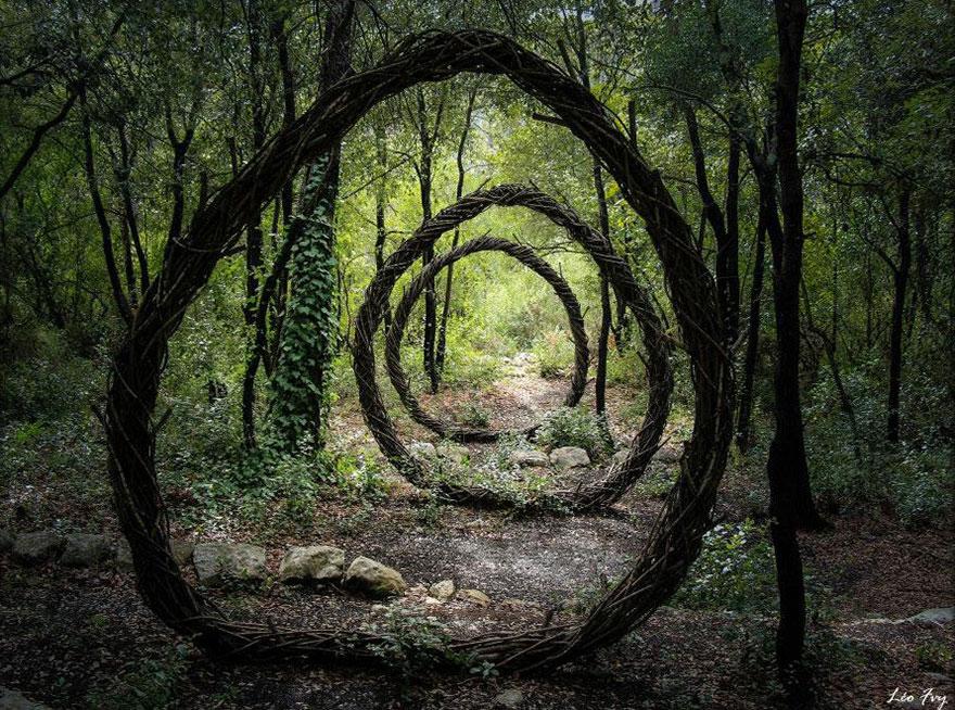 forest-land-art-nature-spencer-byles-1