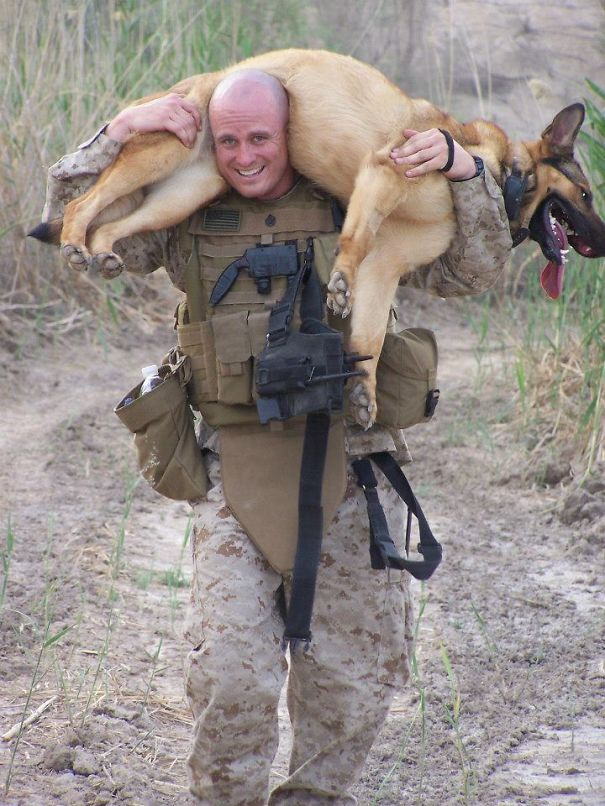 Marine Carries His Partner Back To The Kennels After A Grueling Two-hour Search