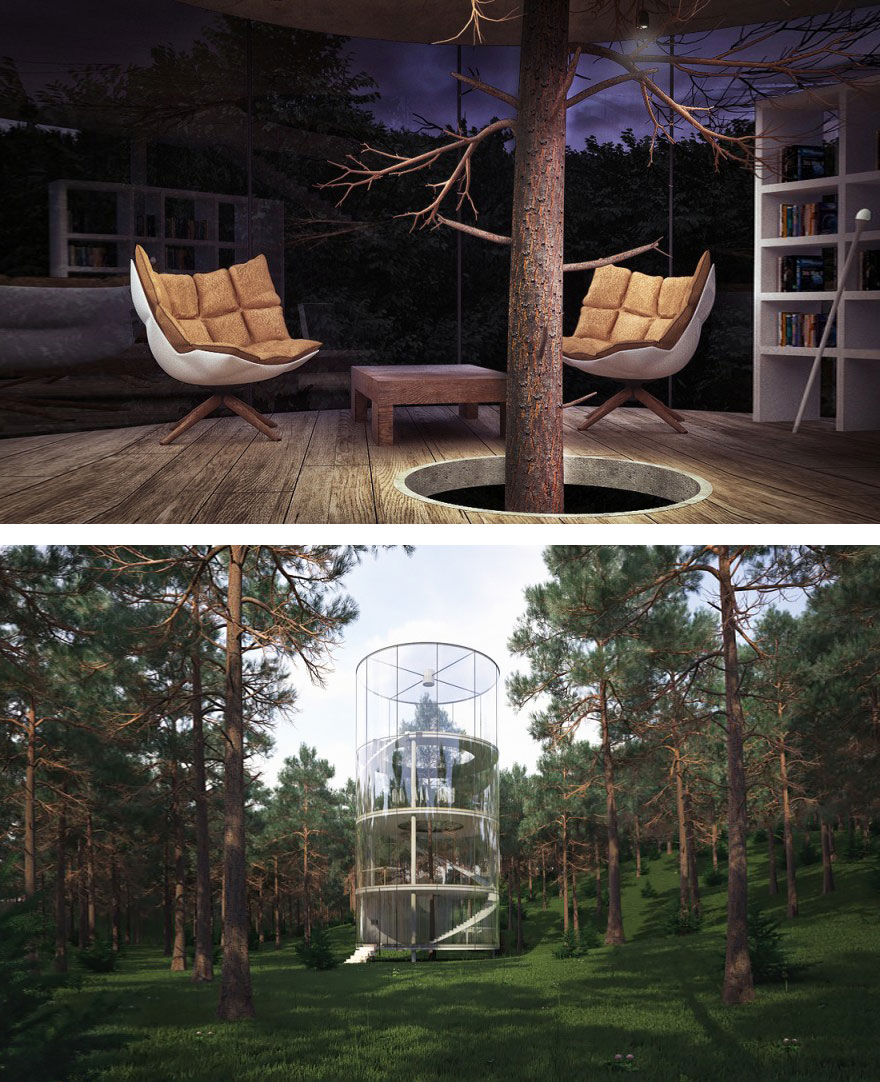 Cylindrical Glass House Built Around A Tree