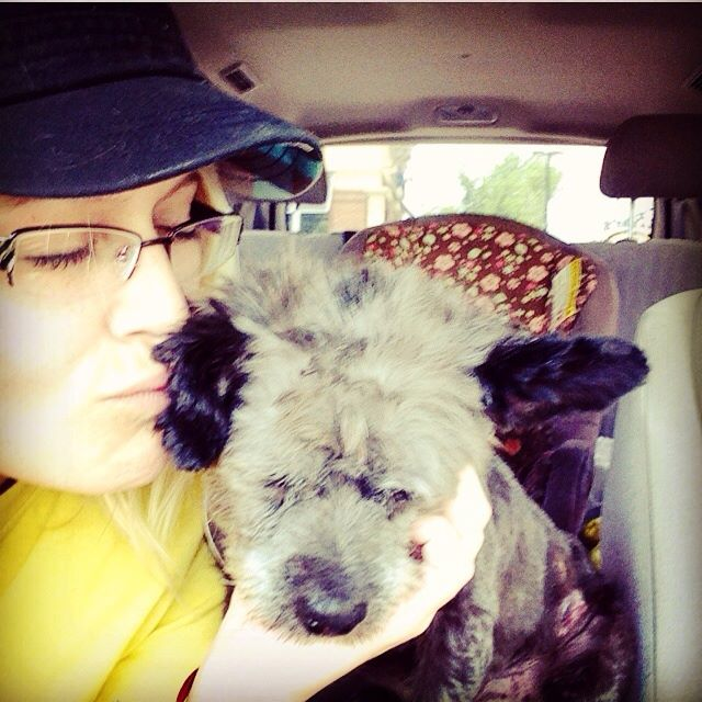 woman-adopts-abandoned-dying-dog-chester-nicole-elliott-5