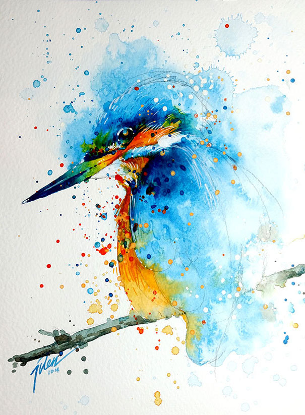 colorful-animal-watercolor-paintings-tilen-ti-11